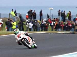 """Moto3 Phillip Island, Qualifiche: Niccolò Antonelli """"Vorrei correre domani, vedremo"""""""
